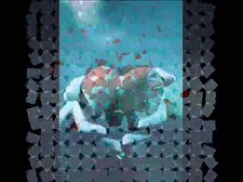 Broken Things - Ryan Kelly