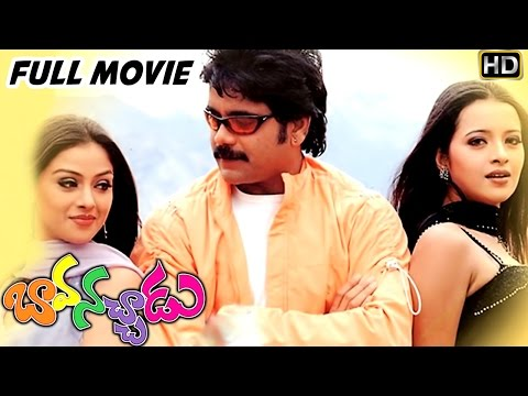 Bava Nachadu Telugu Full Length Movie || Nagarjuna, Simran, Reema Sen || Telugu Hit Movies