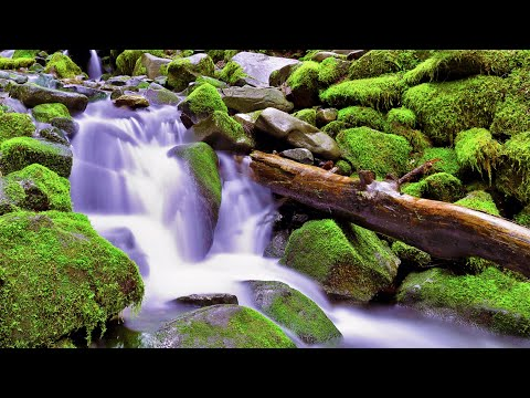water-sounds-white-noise-for-studying,-focus,-relaxation-or-sleep-(no-music)