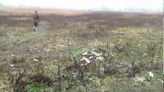 Охота с ягдтерьером на норе по лисе