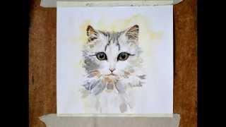 Кошка. Картина акварелью.