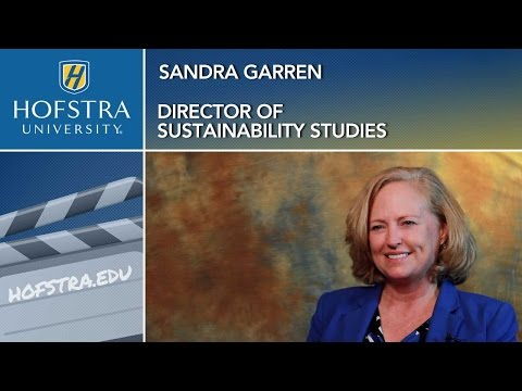 Sustainability Stu