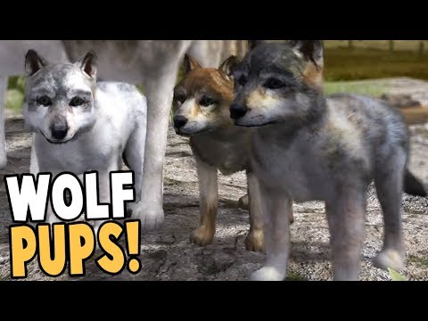 RAISING WOLF PUPS! BEST WOLF SIMULATOR GAME EVER! - Wolf Quest Gameplay