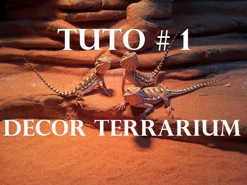 tuto 1 pr sentation terrarium pogona construire son. Black Bedroom Furniture Sets. Home Design Ideas