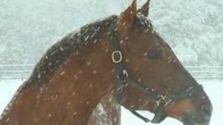 The Blizzard - Jim Reeves - Tall Tales Short Tempers