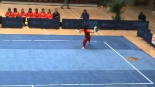 2010  Wang Hongyin Changquan, China Wushu Nationals年全国武术套路冠军赛双钩 王宏胤