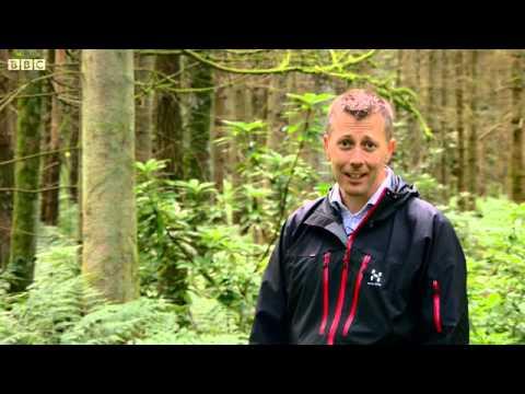 BBC Scotland Investigates