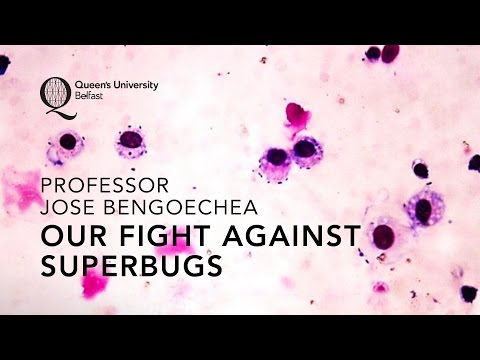 Our Fight Against Superbugs