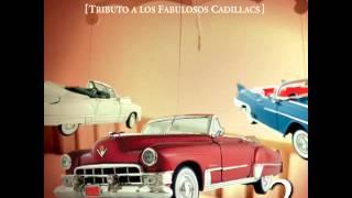 Enjambre - Amnesia Tributo a Los Fabulosos Cadillacs
