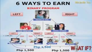 Ways to Earn (Hybrid Compensation Plan) in Aim Global