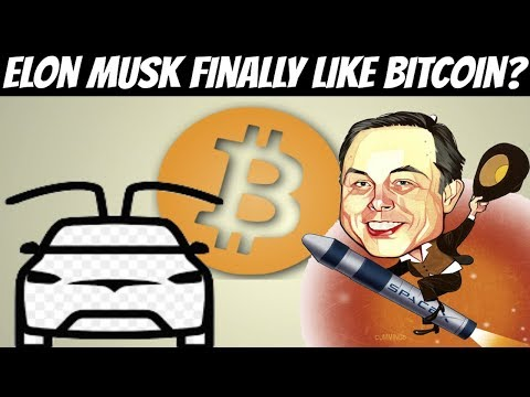 Elon Musk Accepts Crypto   Electric Cars Can Create Roadmap for crypto (Success)
