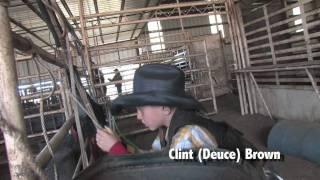Deuce Brown Bull Riding School Video
