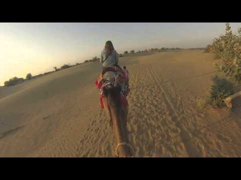 (02) Camel safari - Inde