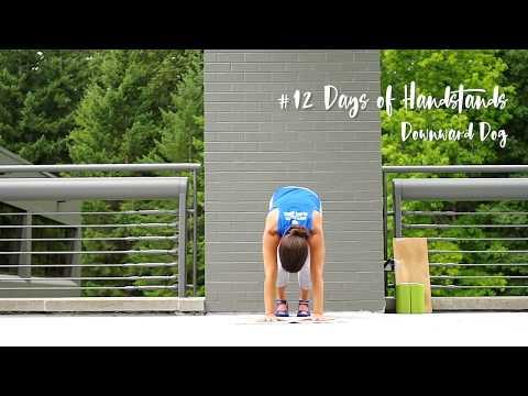 Downward Dog Handstand Drill | YogaSlackers 12 Days of Handstands