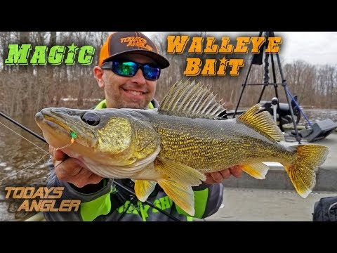 MAGIC Walleye Bait - Spring Fly Fishing Outfishes Plastic!! - Todays Angler