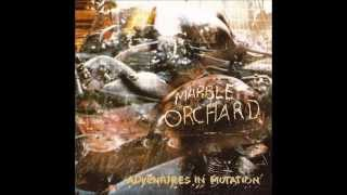 Marble Orchard - Tear It Down (1995)