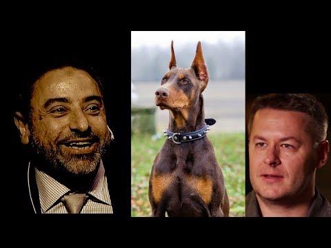 Do Muslims hate dogs as Islamicize Me Islamophobes claim | Fadel Soliman