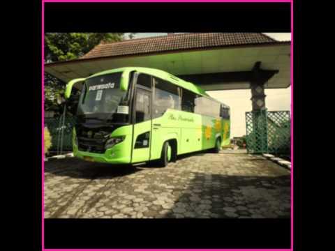 Kumpulan foto bus