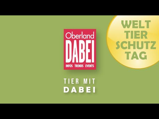 Tier mit DABEI - 04.10.2021 - WELTTIERSCHUTZTAG