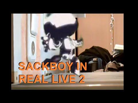 sackboy live