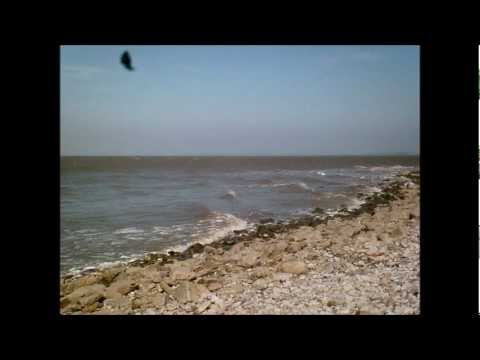 The Flat Holm Island Experience, Part 19, Castle Rock & East Beach , May 2012.wmv