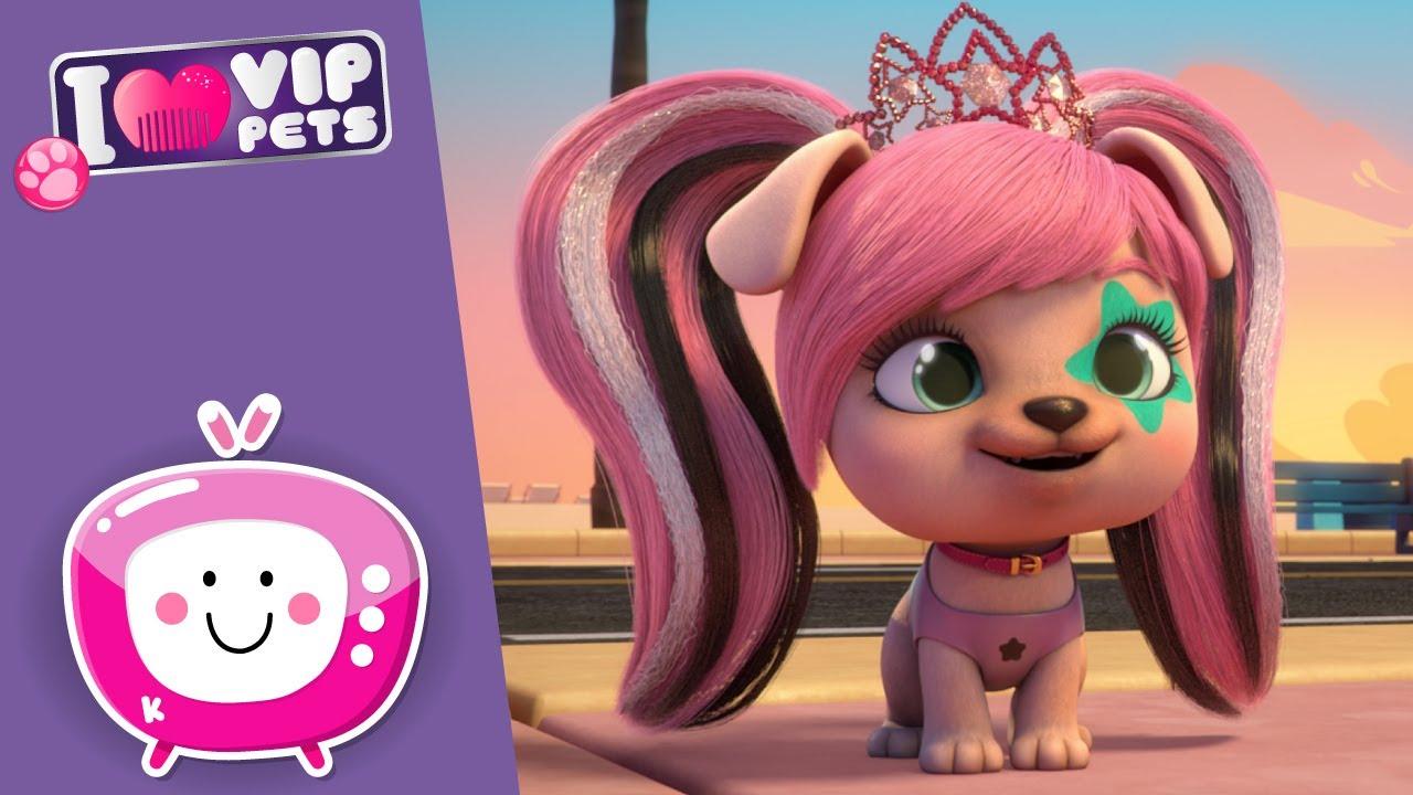 💿 DJ GWEN 🎶 VIP PETS 🌈 Nouvel Épisode ✨💕 Dessins animés pour enfants