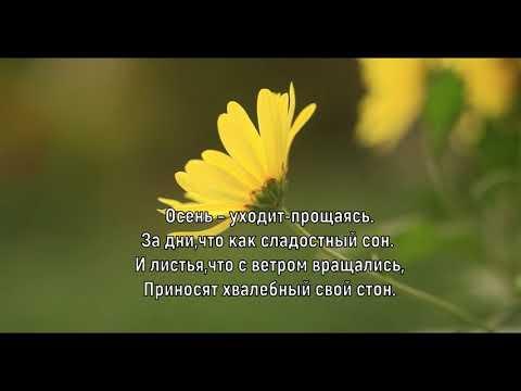 Осень прекрасная осень! Елена Ваймер