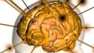 Übergewicht, das Gehirn und Abnehmen durch Hypnose