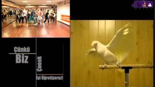 NEDEN AYTUNC BENTURK DANCE ACADEMY ? WHY ABDA ?