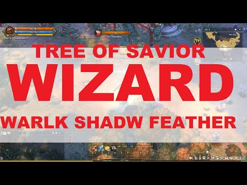 TOS BUILD - WARLOCK SHADOWMANCER FEATHERFOOT