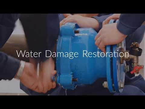 Water Damage Restoration in Philadelphia PA : Home Inspector