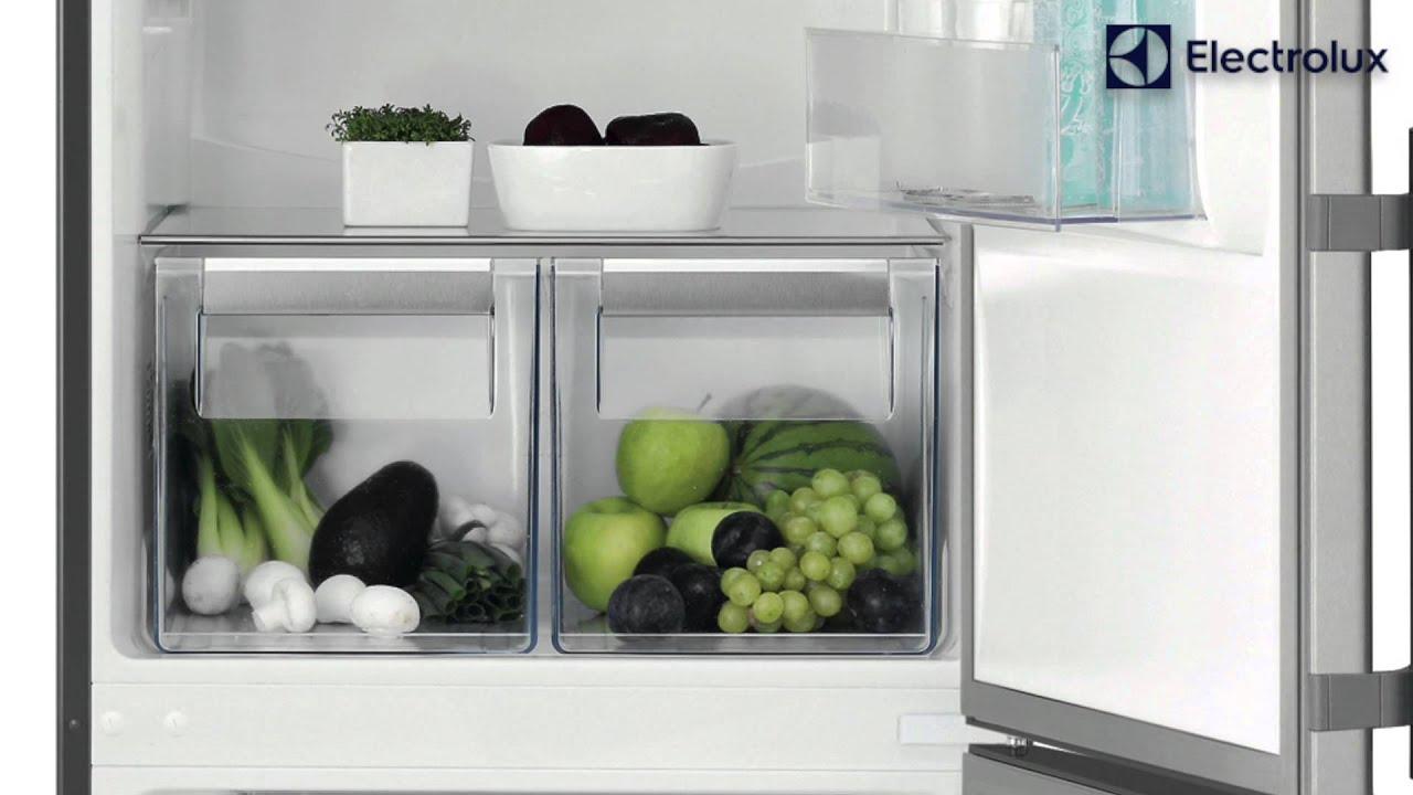 Лучший холодильник 2020 года от производителя Electrolux