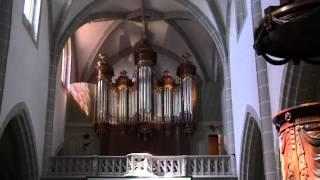 Rick Wakeman's St. Martins Organ Vevey Switzerland
