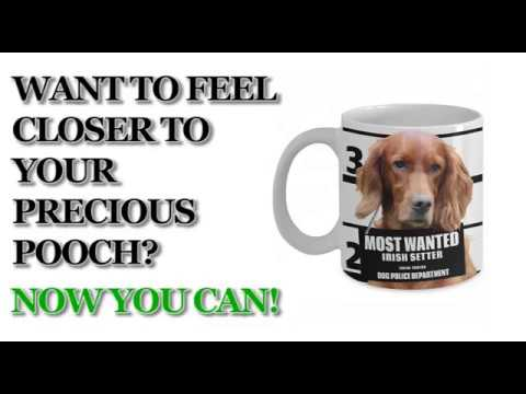 Most Wanted Irish Setter – 11oz White Ceramic Coffee Mug