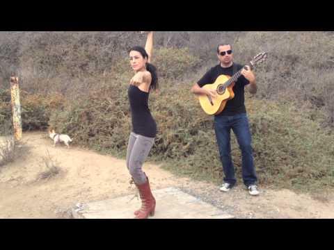 Flamenco Dance, Guitar, Chihuahua