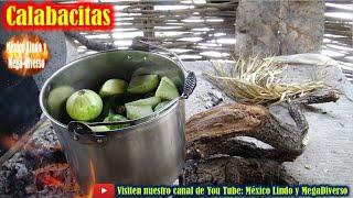 Cocinando unas CALABACITAS tiernas para comerlas con LECHE 🍲 🍠