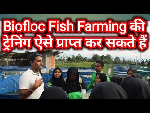 Biofloc ट्रेनिंग कैसा होगा