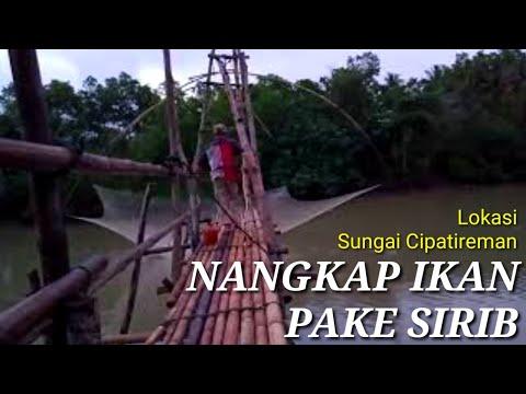 SIRIB - Nangkep