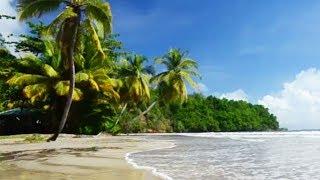 Grenada | Die schönsten Seiten der Karibikinsel | Kleine Antillen