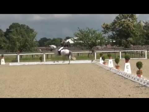 FAIRPLAY & Ines Knoll - 2. Sichtung WM Junge Dressurpferde 02.07.2014