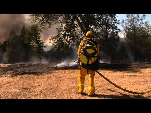 CAL-FIRE : Vegetation Fire Coal Pit Road, Shasta County