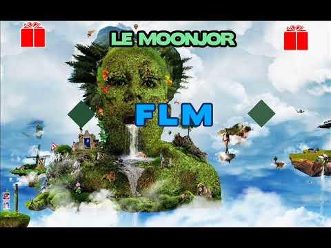 Le Moonjor Ft Selekta Rom Prod - FLM
