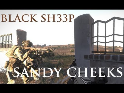 Sandy Cheeks