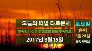 띠별 타로운세)오늘의 운세 2017년 8월19일