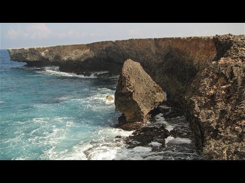 Diving & Exploring the Bonaire Marine Park part3
