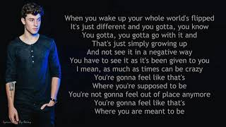 Shawn Mendes - Understand | Lyrics Songs