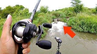 Hunting a SAVAGE New Fish Species!!!