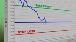 Forex Time Machine Brief Overview of Trading Course