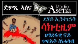 Voice of Assenna: SAKITISM: PFDJ