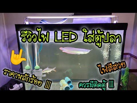 รีวิวไฟ LED ใส่ตู้ปลา ราคาหลักร้อย .. สีสวยจัดจ้านในย่านนี้ ควรมีติดตู้เลยทีเดียว
